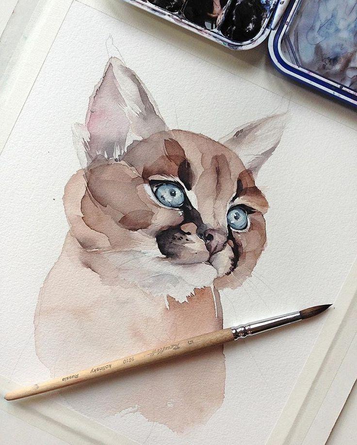 Por trás dos olhos azuis   – The Art of Getting by