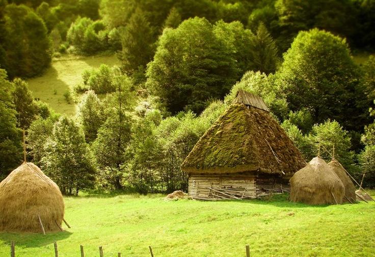 Via Why I Love Romania Facebook Page - somewhere in Maramures county ♦ Romania #romania