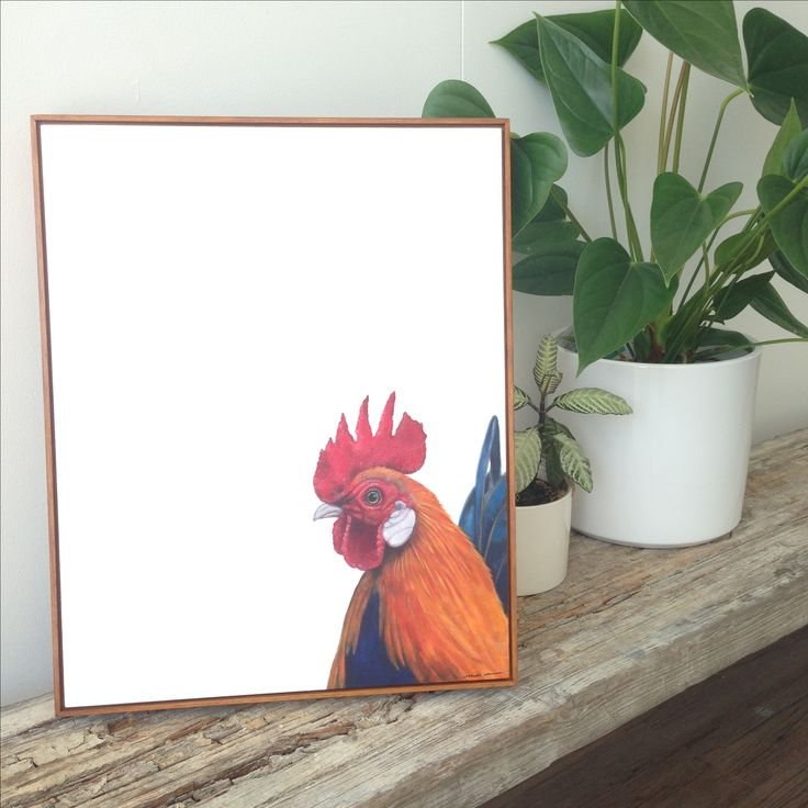 Rooster Contemporary Oil on Board Painting by Charles Hannah Art & Design. Www.charleshannah.com