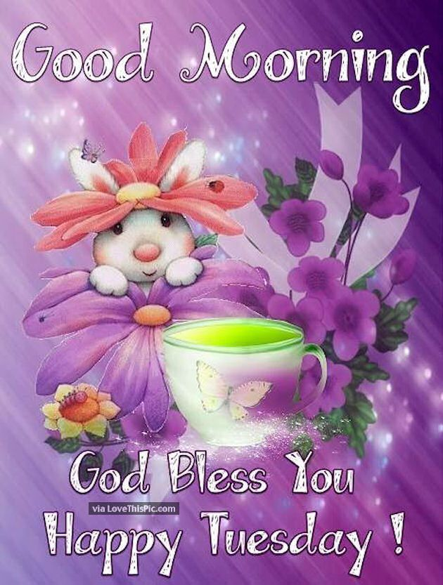 Good Morning God Bless You Happy Tuesday Cute Quote Daily Posts