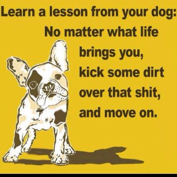 French Bulldog Inspiration.