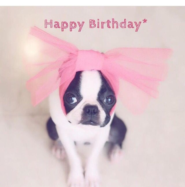 162 best images about Happy Birthday Greetings, Wishes ... - photo#32