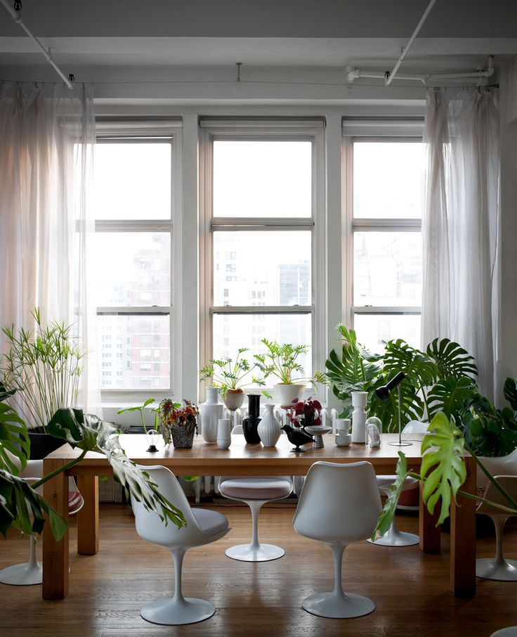 The Glass Farmhouse Loft   White vase   Green Plants. 104 best  Dining Room Plants  images on Pinterest   Dining rooms