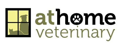 At Home Veterinary: Housecalls in Greater Boston and MetroWest