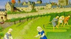 link voor veel filmpjes over de Middeleeuwen o.a. over ontstaan vd 1e steden en kastelen, over opkomst van de handel, over stadsrechten, over ridders, kloosters en de pest.
