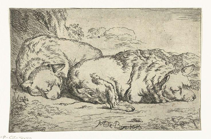 Marcus de Bye   Twee slapende honden, Marcus de Bye, 1657  