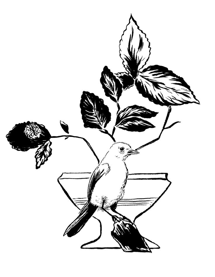 生け花 ceramics bird ikebana flowers
