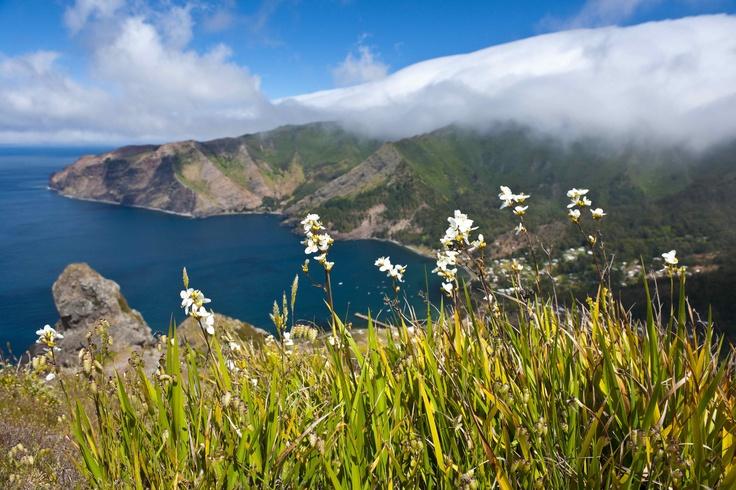 Robinson Crusoe Island, Chile - Cascada Expediciones