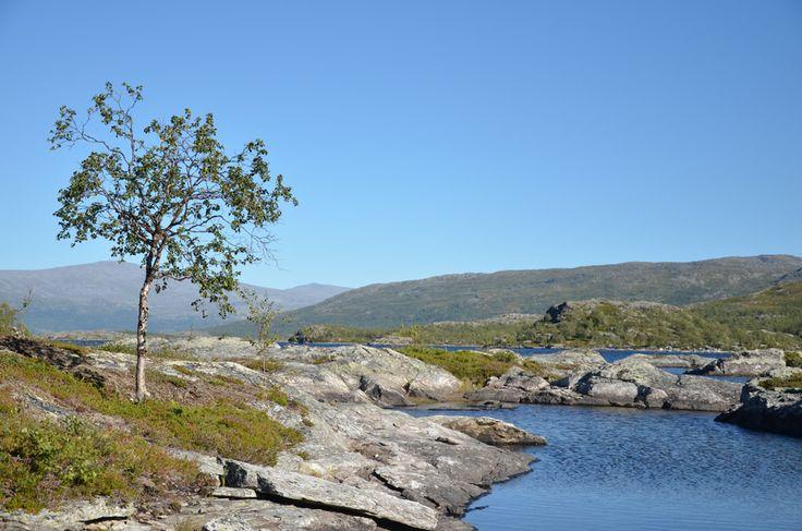 Swedish Lapland, Miekak, Arjeplog @HojnaSandra.se