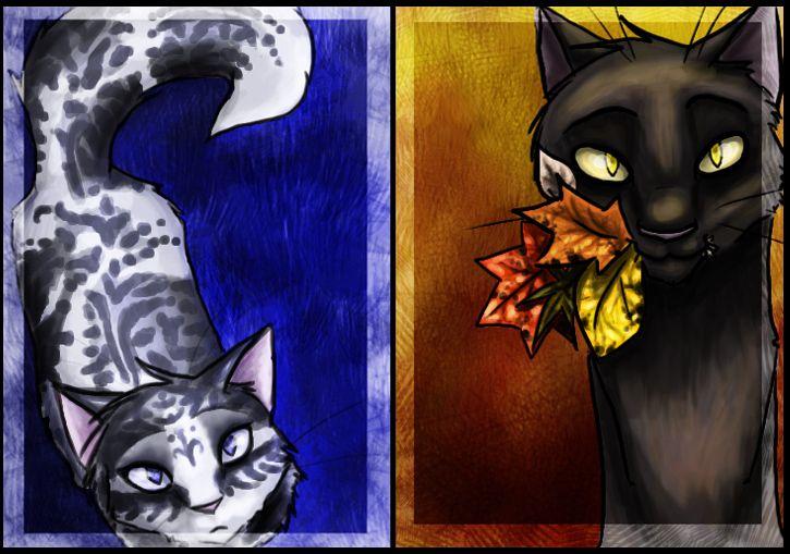 ivypool and breezepeltWarrior Cats Ivypool And Breezepelt