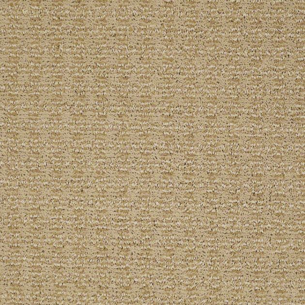 """Such Gorgeous Colors And Softness: Gorgeous Carpeting In Style """"Luxe"""""""