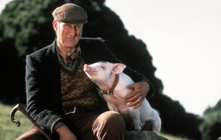 77-Year-Old Babe Actor James Cromwell Sentenced to Jail