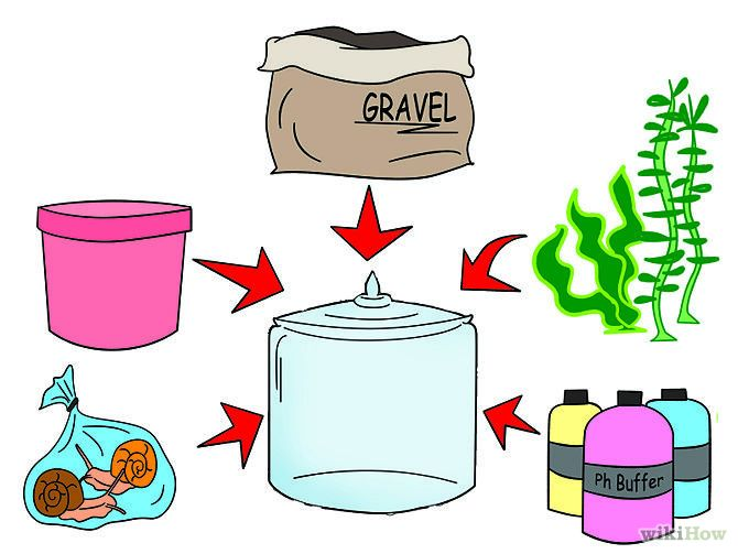 Build a Self Sustaining Ecosystem http://www.wikihow.com/Build-a-Self-Sustaining-Ecosystem