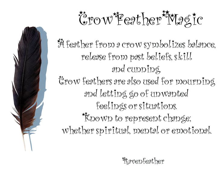 Crow feather magic