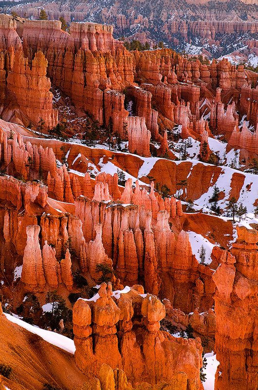 Bryce Canyon, Utah http://www.visitutah.com/parks-monuments/national-parks/bryce-canyon/?gclid=CJGcmKn65rkCFenm7AodQxYALg