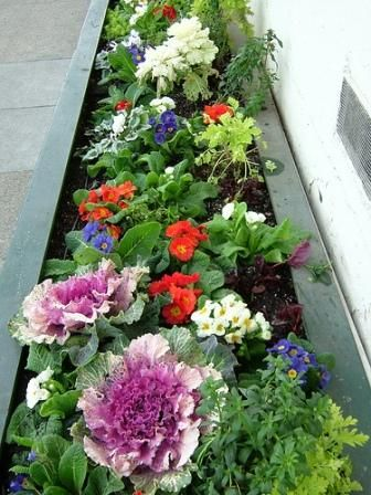 31 best Small Space Gardening images on Pinterest Small gardens