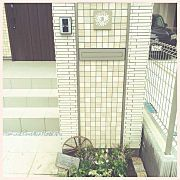 Entrance,ナチュラル,玄関アプローチ,ワイヤープランツ,門柱前の花壇,シマトネリコに関連する他の写真