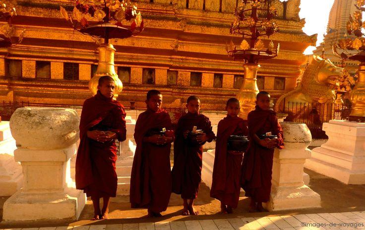 Pagode shwezigon - Bagan - Myanmar (Birmanie)