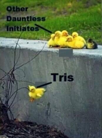 Divergent Niezgodna Tris