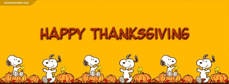 Looking for a high quality Snoopy Happy Thanksgiving Facebook cover? You just found one! Make your Facebook timeline profile look awesome with a Snoopy Happy Thanksgiving Facebook cover found only on FB Cover Street.