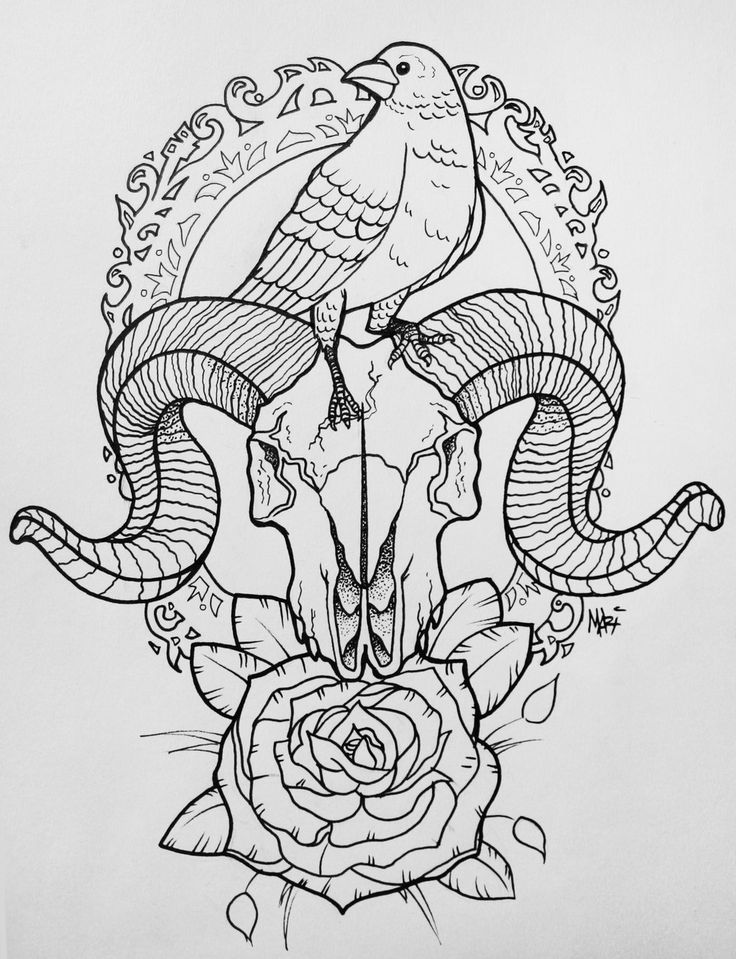 Raven Skull Tattoo by MaryMaryLP.deviantart.com on @DeviantArt