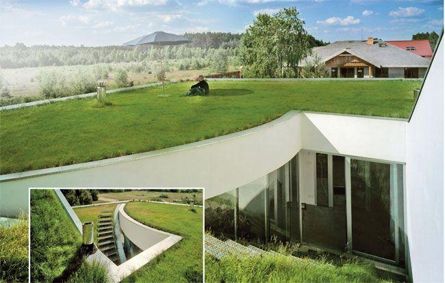 Un tetto verde si comporta come un sistema filtrante di moltissime particelle nocive presenti nell'aria e mitiga il clima; la bioarchitettura mira ad incentivare i tetti verdi per contrastare la di...