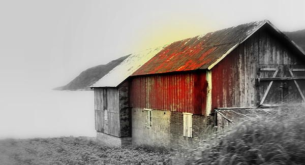 The Old Barn By The Sea
