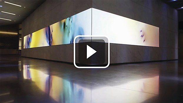 Installation responsive to sound - woah. Dolby Laboratories installation
