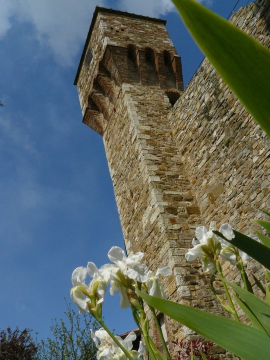 The Small Tower (Il Torrino)