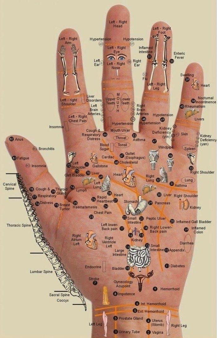 Soignez la douleur partout dans votre corps ; juste en massant la paume de la main !