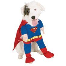 Large Dogs like costumes too!! $15.19 for SuperDogs http://www.halloweencostumesfordogs.org