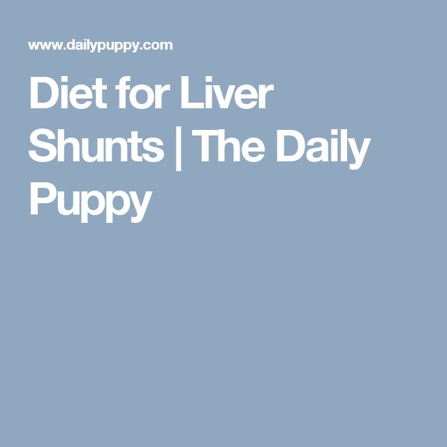 Liver Shunt Dog Food Recipes