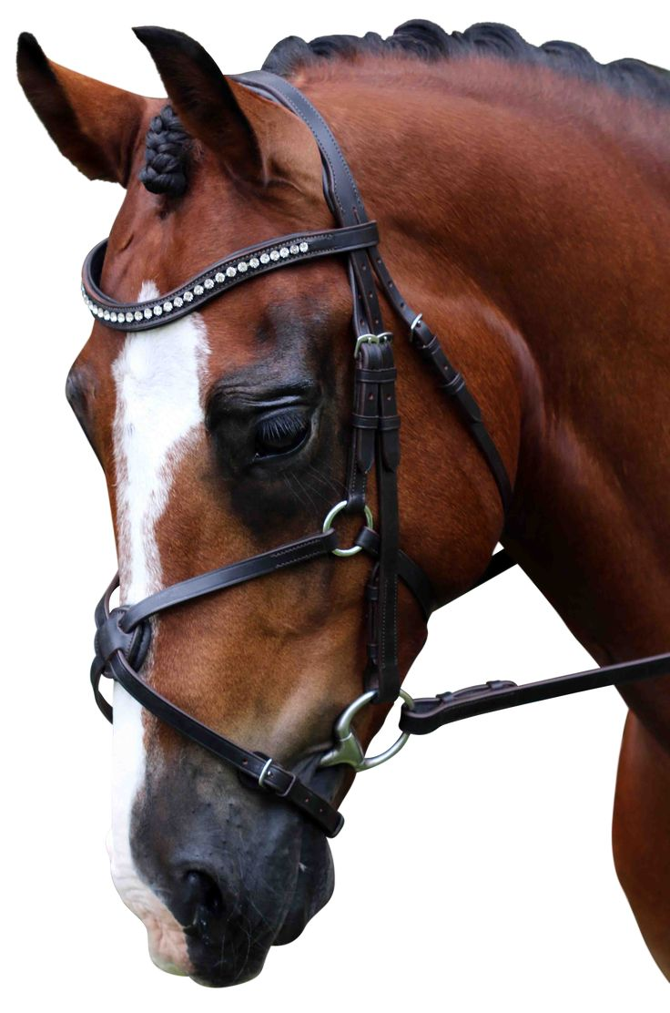 Flexible Fit Equestrian English Leather Gel Bridle in Havana & Stainless Steel with Clear Swarovski Crystal Mid Wave Shape Browband & Gel Padded Grackle