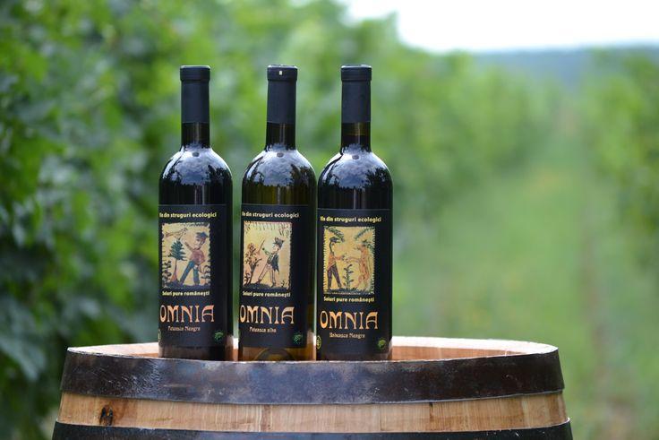 Vin - Rose-urile și Prosecco, la mare căutare în România