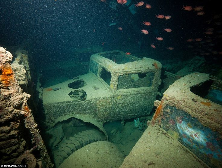 Treasure trove of classic cars at the bottom of the sea: The British Merchant Navy ship carrying military vehicles that was sunk in the Red Sea during the Second World War   Read more: http://www.dailymail.co.uk/news/article-2702871/Treasure-trove-classic-cars-bottom-sea-The-British-Merchant-Navy-ship-carrying-military-vehicles-sunk-Red-Sea-Second-World-War.html#ixzz38LAi4W33  Follow us: @MailOnline on Twitter   DailyMail on Facebook