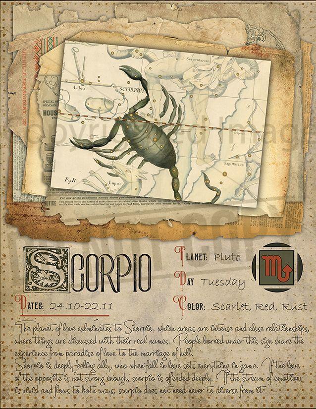 horoscope chien scorpion