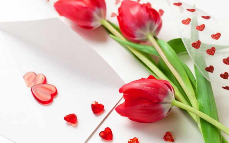 3213b434d0f7447f2237ecdf3f2e273f red tulips tulips flowers - Valentine's Day approaches. Do you have hearts and flowers?