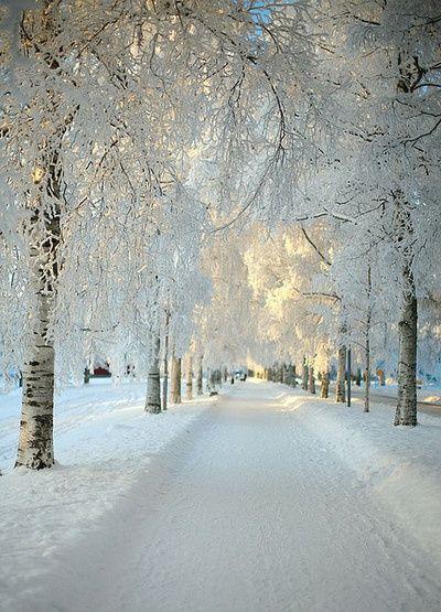 Snow white road..