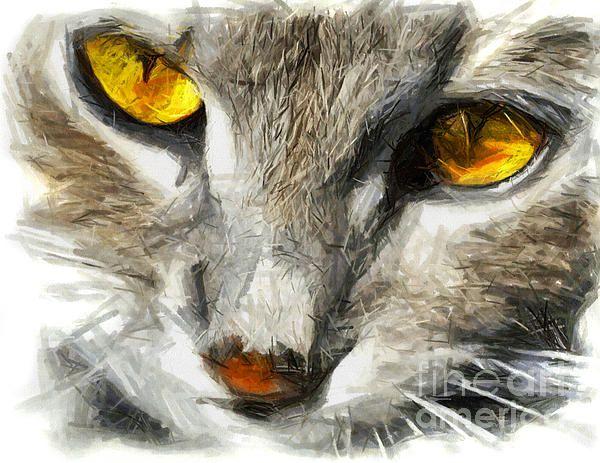 Grey cat with yellow eyes - DRAWING digitally enhanced by Daliana Pacuraru