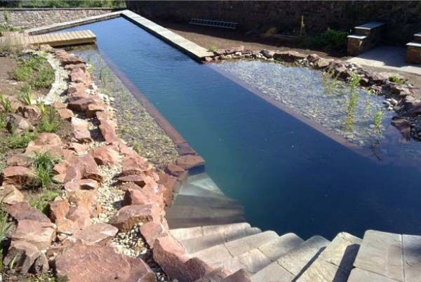 Natural swimming pool. Well, sort of. Man-made, but no chemicals, no salt. I'm torn. I love the look, but would I swim in it? Or would it turn into Grover's...