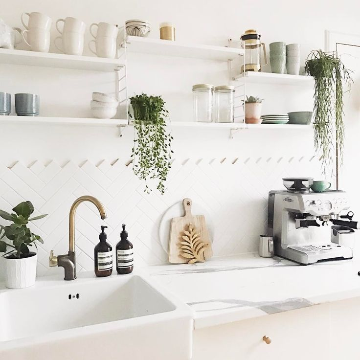 "6,236 Likes, 52 Comments - KATE LA VIE (@kate.lavie) on Instagram: ""My most requested posts are always about my house plants, so today's post is all about the best…"""