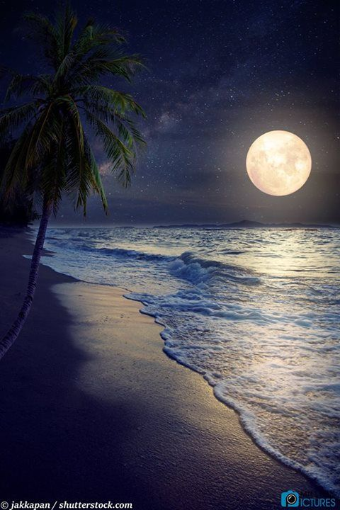 Moonlight on the water and utter serenity.