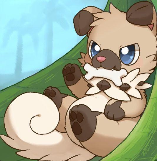 Scrappy lil' Rockruff pokemon<<<<AWWWW I WANT THIS ON MY DAMN TEAM HURRY UP NINTENDO