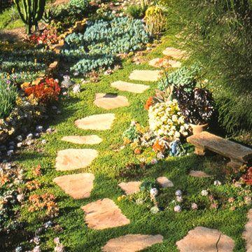 Create a Water-Wise Landscape   Lifescape