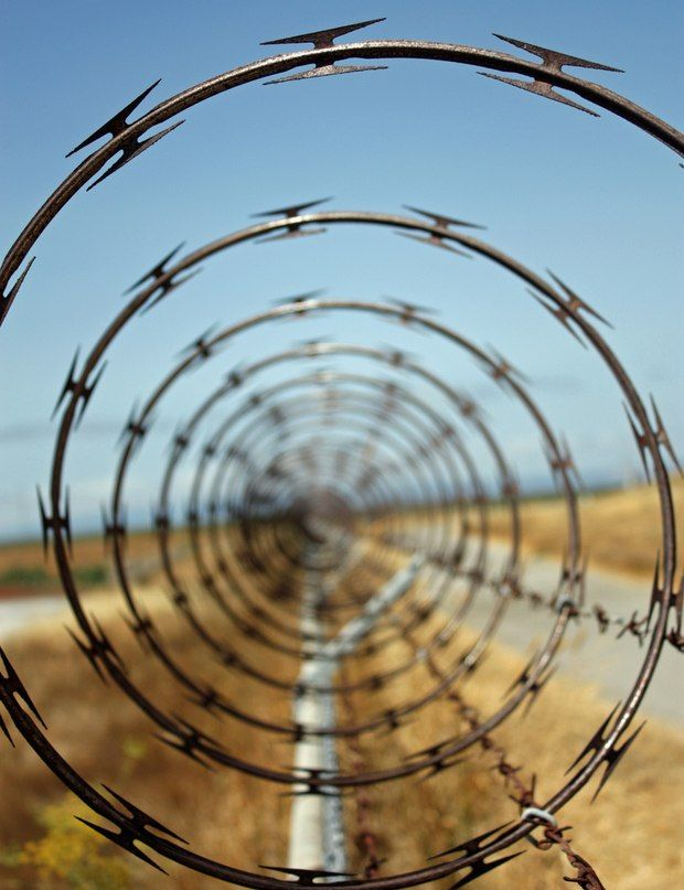 Barbed wire ~ wow!