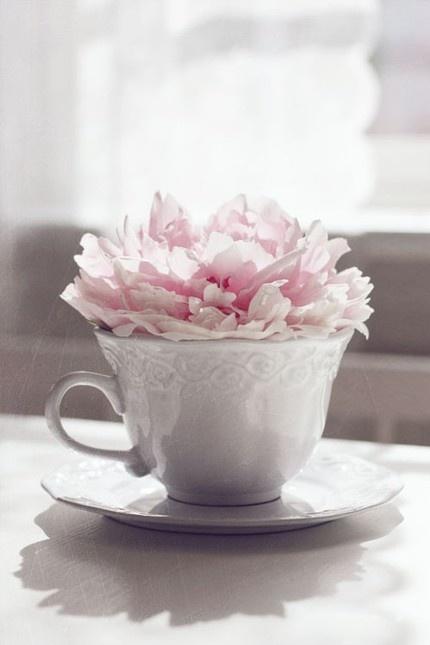 my cup of tea - love the peony