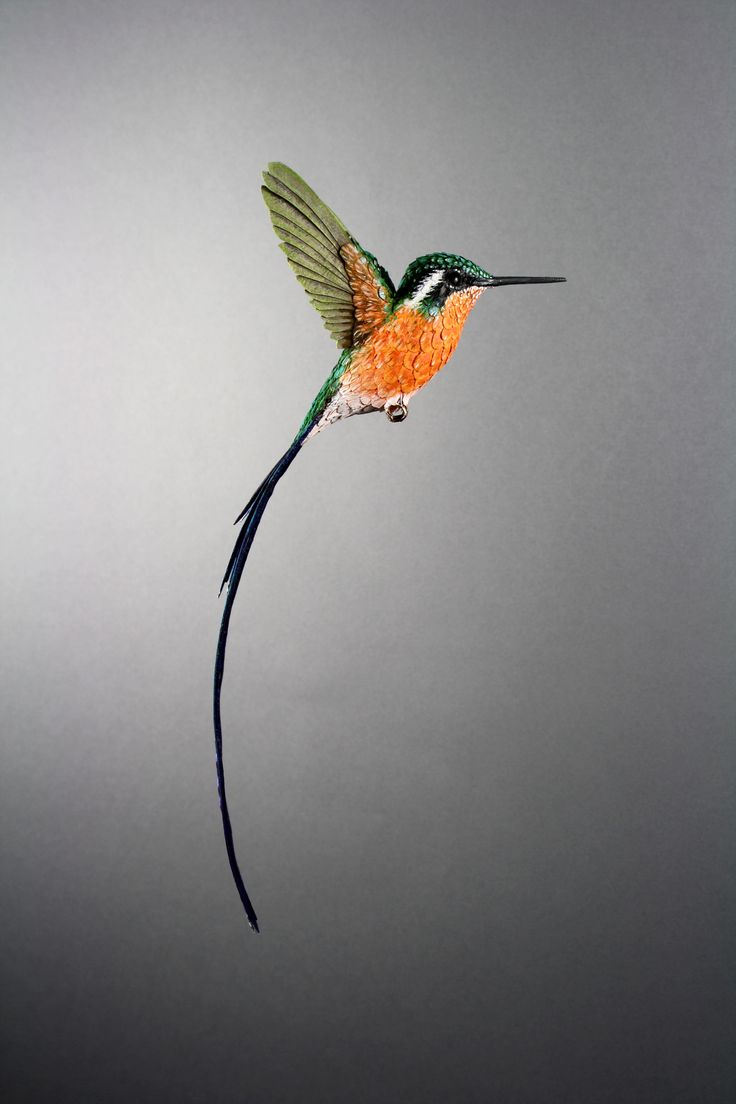 Paper and wood purplethroated long tailed hummingbird sculpture