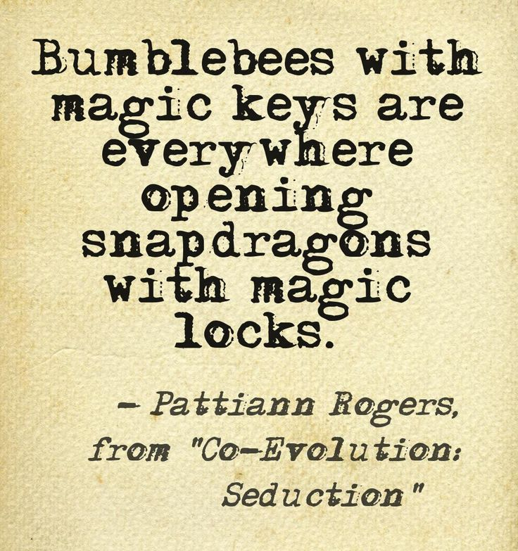 Bumblebees with magic keys are everywhere opening snapdragons with magic locks. -- Pattiann Rogers