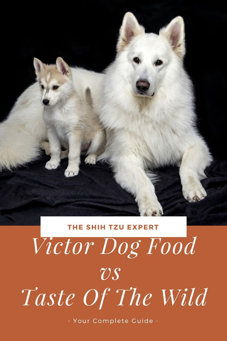 Victor Dog Food Vs Taste Of The Wild Is One Better Than The