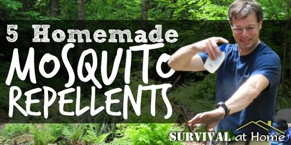 bzzzzz ... whack!  5 Homemade Mosquito Repellents